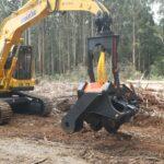 Argonauts Tree Service